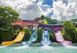 Unlimited Visits + FREE Parking - SeaWorld®,  Busch Gardens e Aquatica