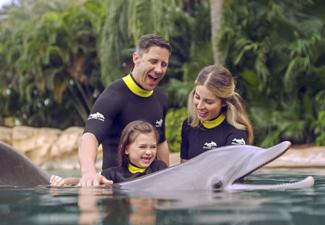 Discovery Cove® + Sea World + Aquatica