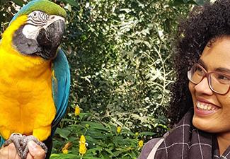 Parque das aves - Sem Ingresso