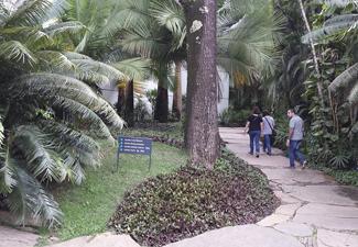 City Tour em Inhotim - (Com Guia)