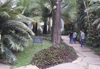 City Tour em Inhotim - (Guia Bilíngue: Inglês e Espanhol)