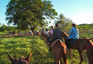 Cavalgada Recanto do Peão (Vespertina) - Com Transfer privativo de Hotéis em Bonito