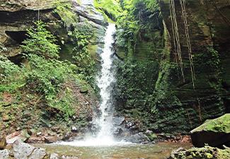 Trilha Cachoeira Cristal
