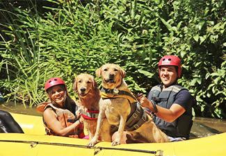 Rafting Kids / Rafting Pet