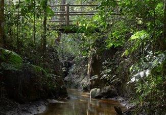 Pedalada Parque Nacional Pau Brasil - 40 Km