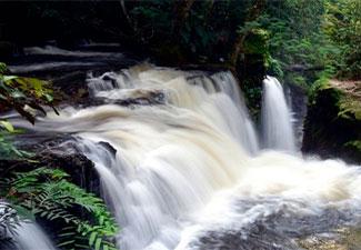 COMBO 03 - Transfer de chegada e Saída + Cachoeiras de Figueiredo