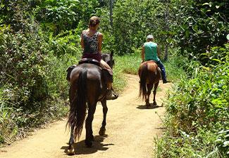 Cavalgada Bom Sossego - Com Transporte