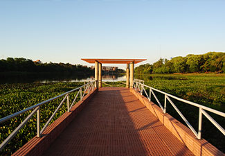 City Tour em Ciudad del Este + Compras no Paraguai