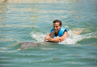 Dolphin Ride - Punta Cancun