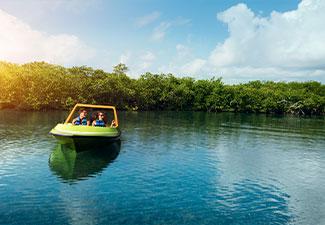 Jungle Tour Express