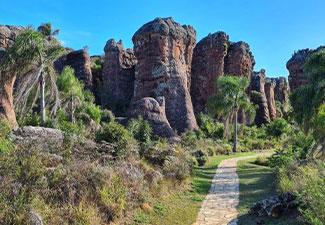 Tour Vila Velha com visita a Witmarsum
