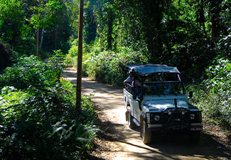 Jeep Tour 4x4 Privativo