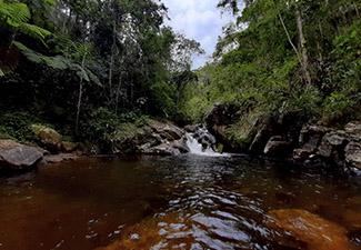 Trilha das Cachoeiras - Saindo de Guaratingueta/SP