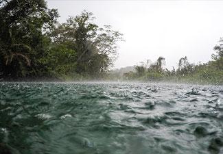 Passeio de Barco e Trilha Nascente Rio Sucuri