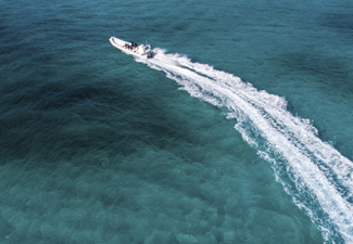 Cozumel Sea Safari