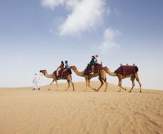 Safári no Deserto com Camelo