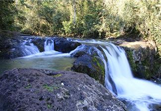 Cachoeiras Secretas de Foz do Iguaçu (meio dia)